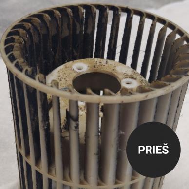 Gartraukių ir riebalinių filtrų valiklis 1000 ml 6